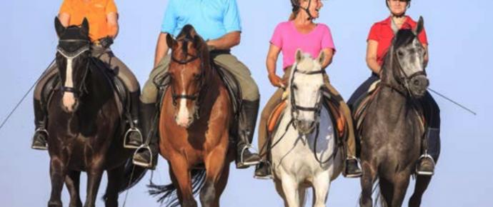 Reitergewicht – wieviel Zuladung ist noch pferdefreundlich?!
